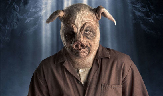 Fat pig slave